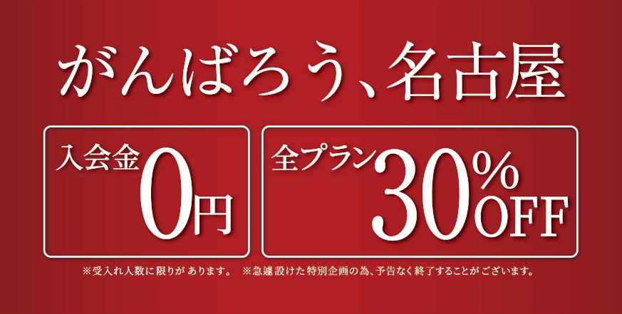 キャンペーン 全プラン30%OFF