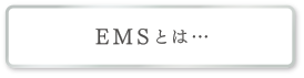 EMSとは